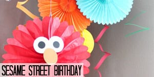 Sesame Street Birthday
