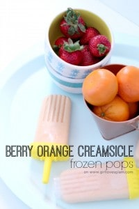 Berry Orange Creamsicle Frozen Pops