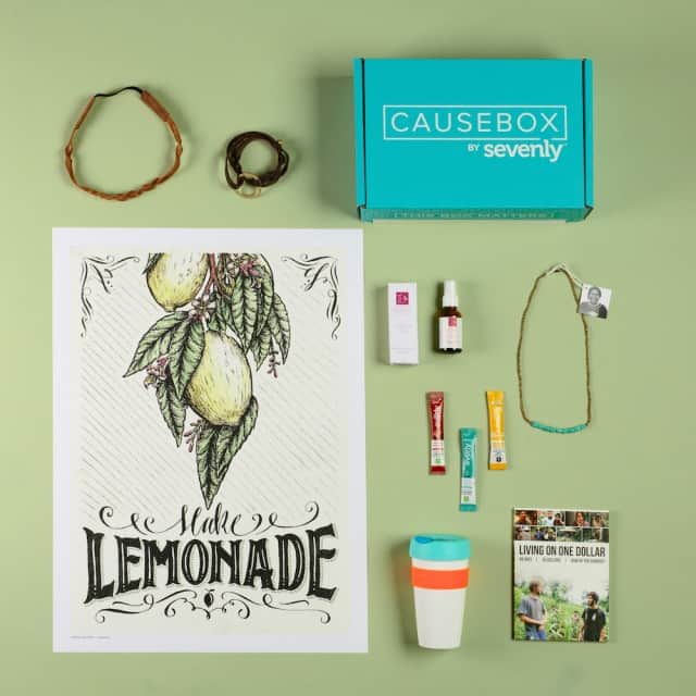 CAUSEBOX03_summer_10