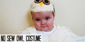 No Sew Owl Costume on www.girllovesglam.com