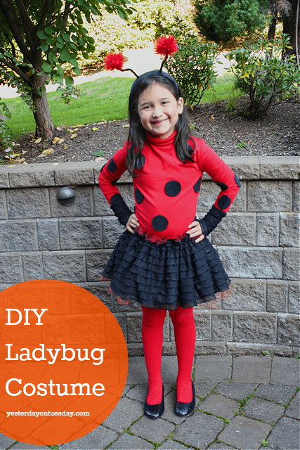 ladybug-costume