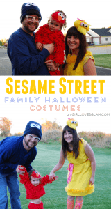 sesame street family halloween costume on