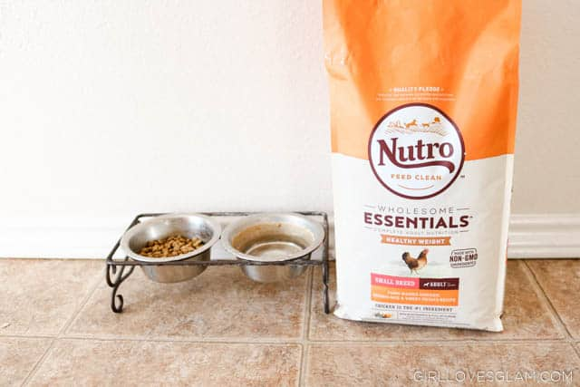 NUTRO™ Dog Food on www.girllovesglam.com