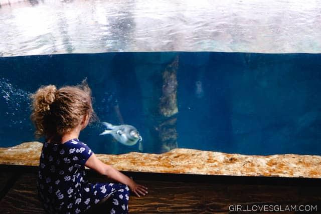 Living Planet Aquarium on www.girllovesglam.com