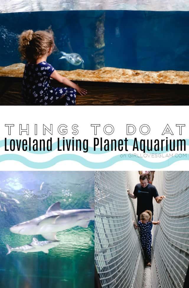 Things to do at Loveland Living Planet Aquarium on www.girllovesglam.com
