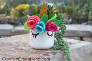 Unicorn Craft Succulent Planter