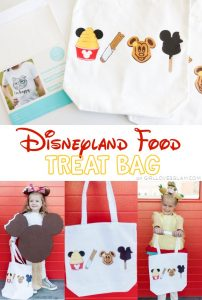 Disneyland Food Treat Bag